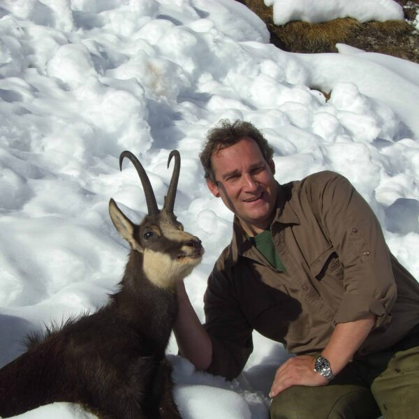 alpine chamois hunting italy