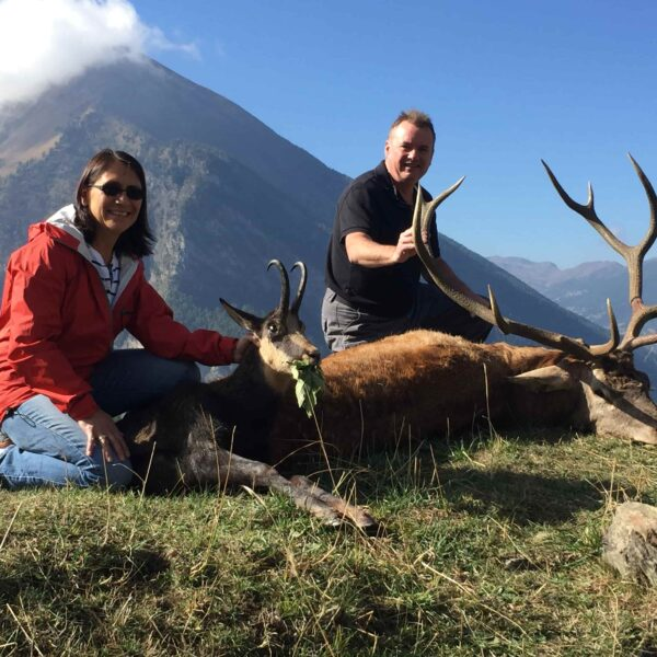 red stag hunting italy