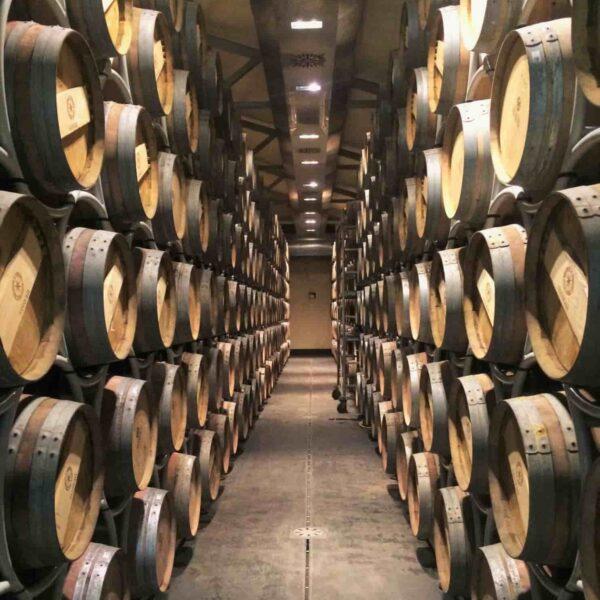 Italian Grand Tour Wine Tasting