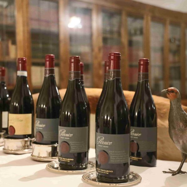 Tuscan Indulgence wine tasting